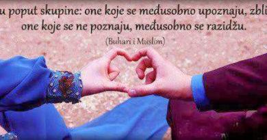 Neke koristi i pouke za muslimana i muslimanku iz braka Allahovog Poslanika sa Hadidžom