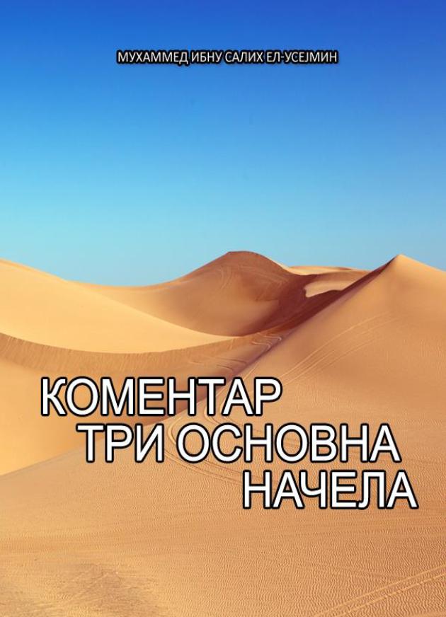 КОМЕНТАР  ТРИ ОСНОВНА НАЧЕЛА
